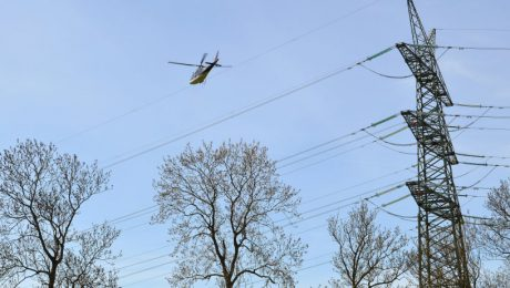 """Online-Artikel """"Helikopter parkt für Vogelschutz auf Stromtrasse"""" von Burkhard Fuchs, www.abendblatt.de, 22.04.2015"""